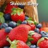 Harvest Berry Limitless Vape Premium E-Juice - Vape Hero Australia