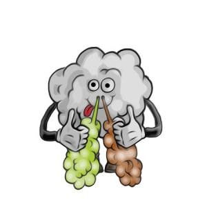 Cloudy Mc Cloud Face Pear Enough - Vape Hero Australia